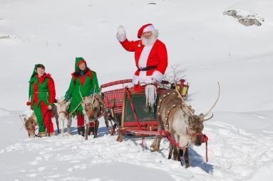 Renne E Slitta Di E Con Babbo Natale + Elfi